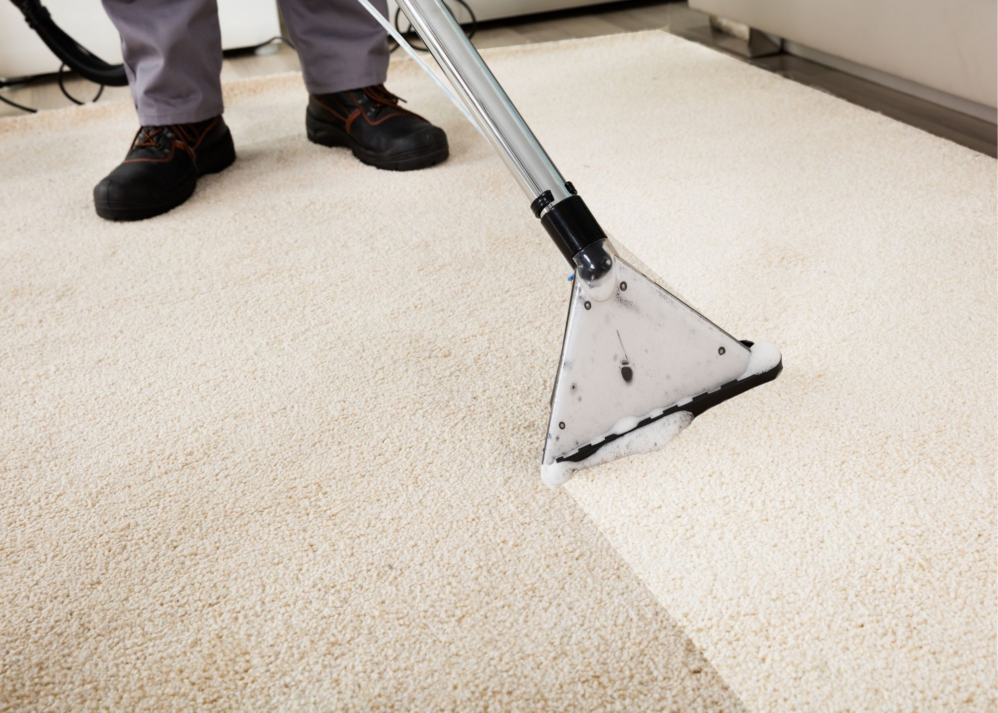 residential carpet cleaning cary nc