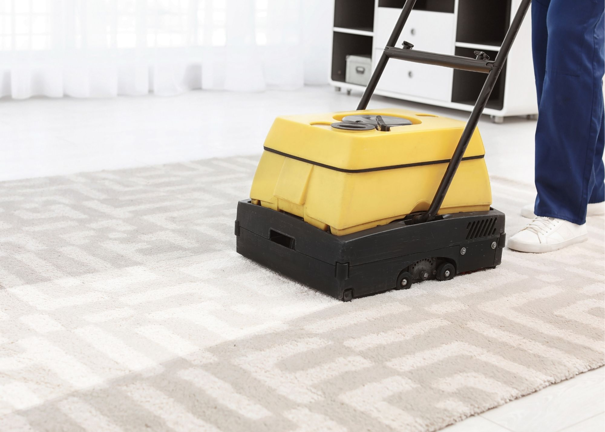area carpet cleaning cary nc