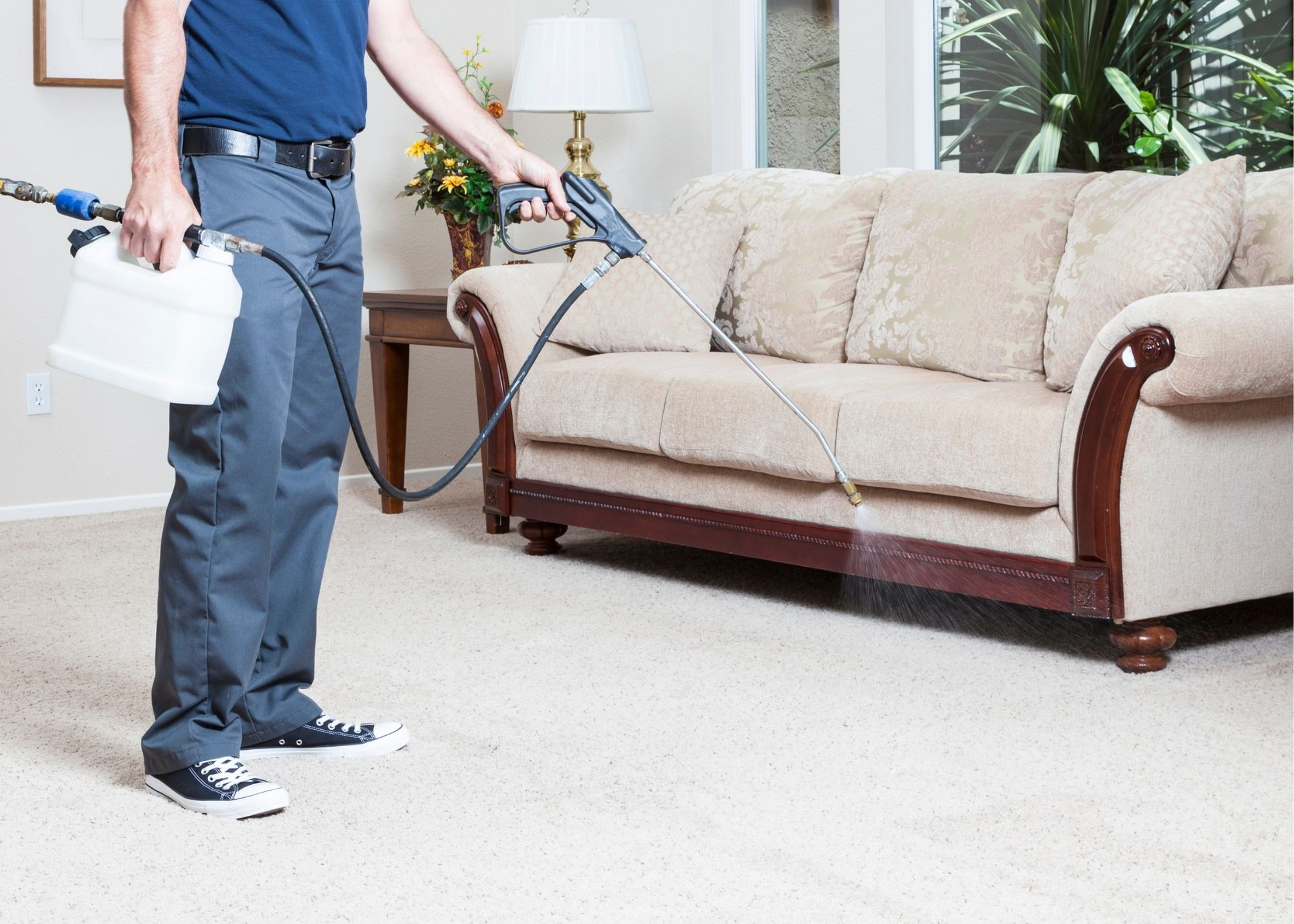 cary carpet cleaning carpet protection